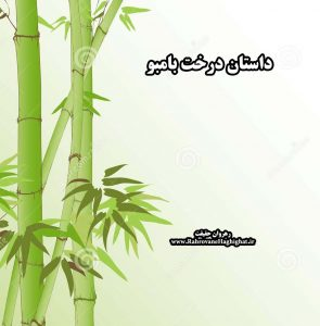 داستان درخت بامبو